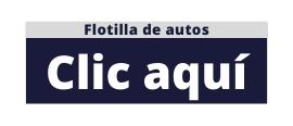Flotilla de autos - Corporate Car